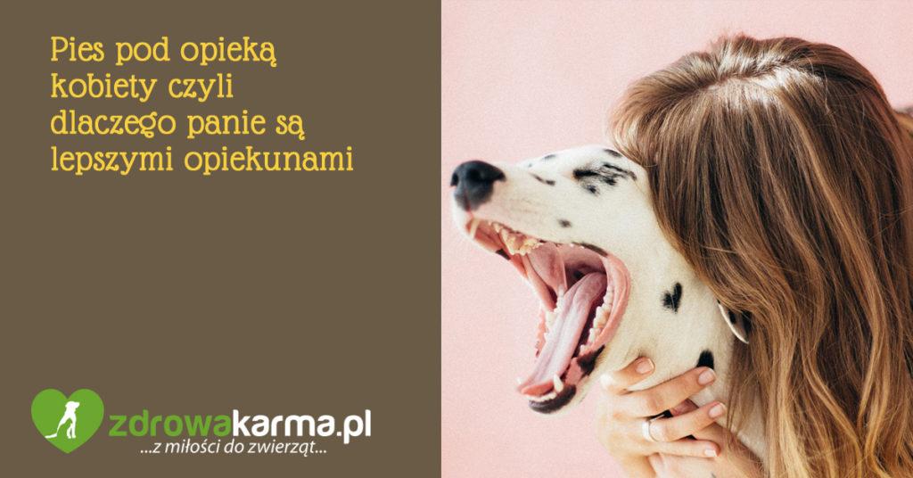 pies pod opieką kobiety