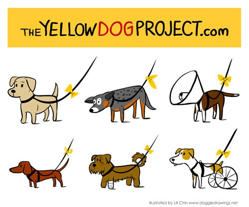 yellowdogproject.com