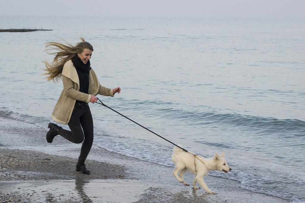 korzyści z posiadania psa - aktywność