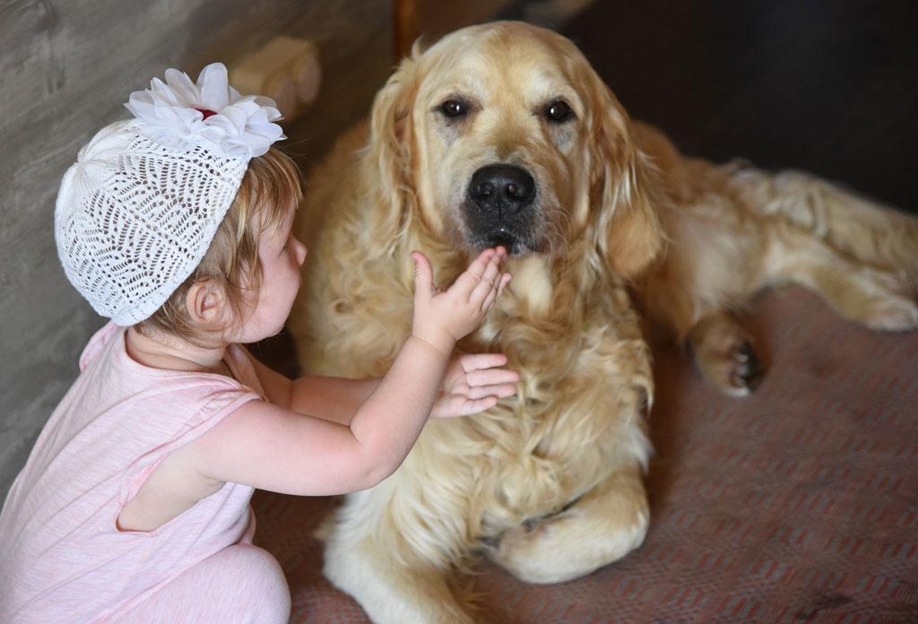 korzyści z posiadania psa - kontakt psa z dzieckiem