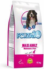 Forza10 Maxi Maintenance z rybą 15kg - sucha karma dla psa