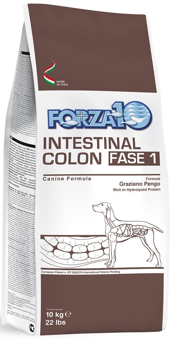 Forza10 Intestinal Colon Fase 1 4kg - sucha karma dla psa