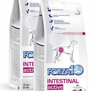 Forza10 Intestinal Active 20kg (2 x 10kg) Jelita Układ Pokarmowy - sucha karma dla psa