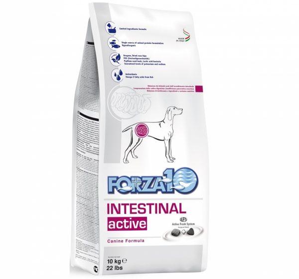 Forza10 Intestinal Active 10kg Jelita Układ Pokarmowy - sucha karma dla psa