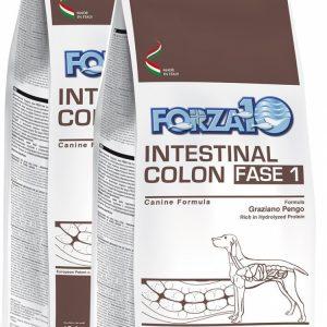 Forza10 Intestinal Colon Fase 1 2 x 10kg – sucha karma dla psa