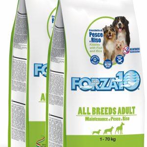 Forza10 All Breeds Maintenance z rybą i ryżem 2 x 2kg – sucha karma dla psa