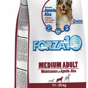 Forza10 Medium maintenance jagnięcina z ryżem 15kg - sucha karma dla psa