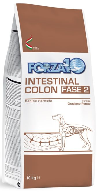 Forza10 Intestinal Colon Fase 2 4kg - sucha karma dla psa