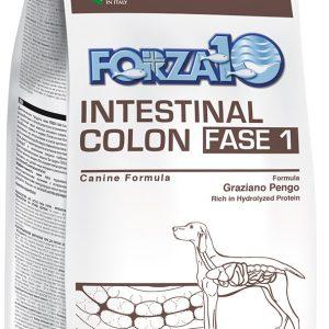 Forza10 Intestinal Colon Fase 1 10kg - sucha karma dla psa