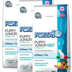 Forza10 Diet Fish Puppy dla szczeniąt 3 x 1,5kg – sucha karma dla psa