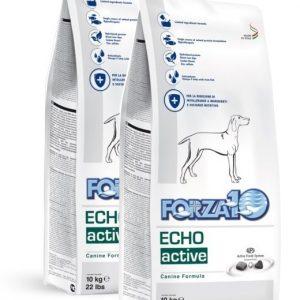Forza10 Echo Active (Oto) 20kg (2x10kg) Ucho  – sucha karma dla psa