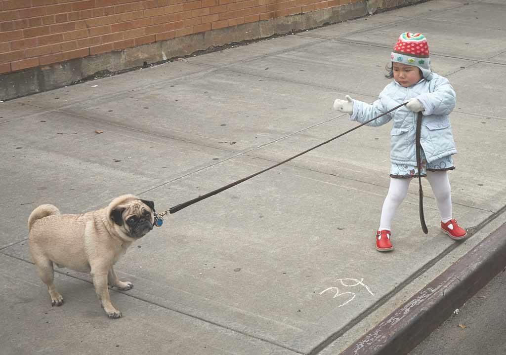 pies i dziecko2