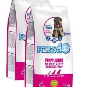 Forza10 Maintenance Puppy Junior z rybą 2 x 15kg karma dla szczeniąt ras średnich i dużych