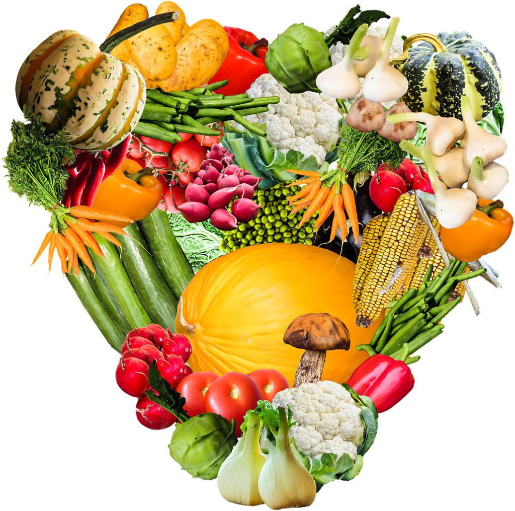 wegańska karma dla psa  zawiera wyłącznie roślinne białka