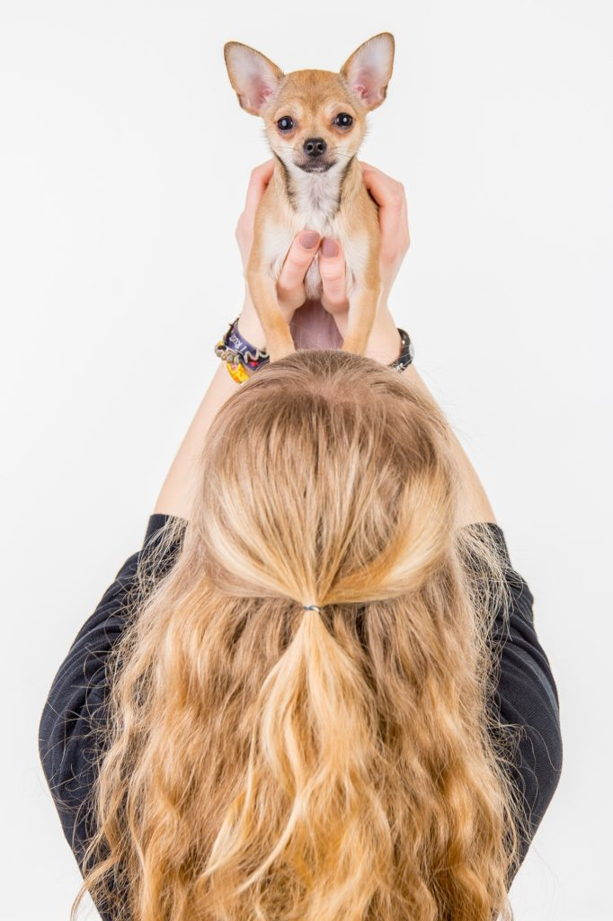 kąpanie psa - nagradzaj dobre zachowanie