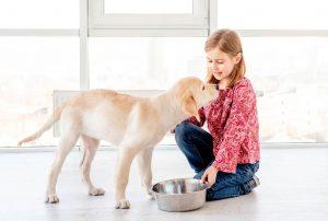 dziewczynka karmi psa