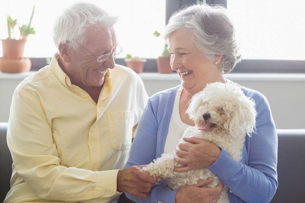 pies dla starszej osoby radosc