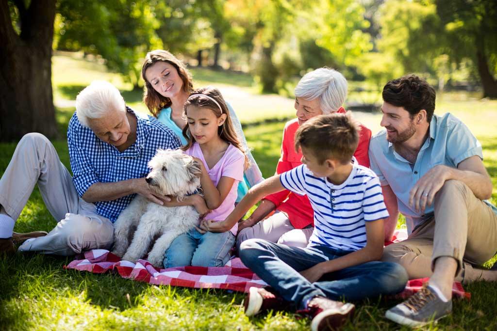 pies dla starszej osoby rodzina
