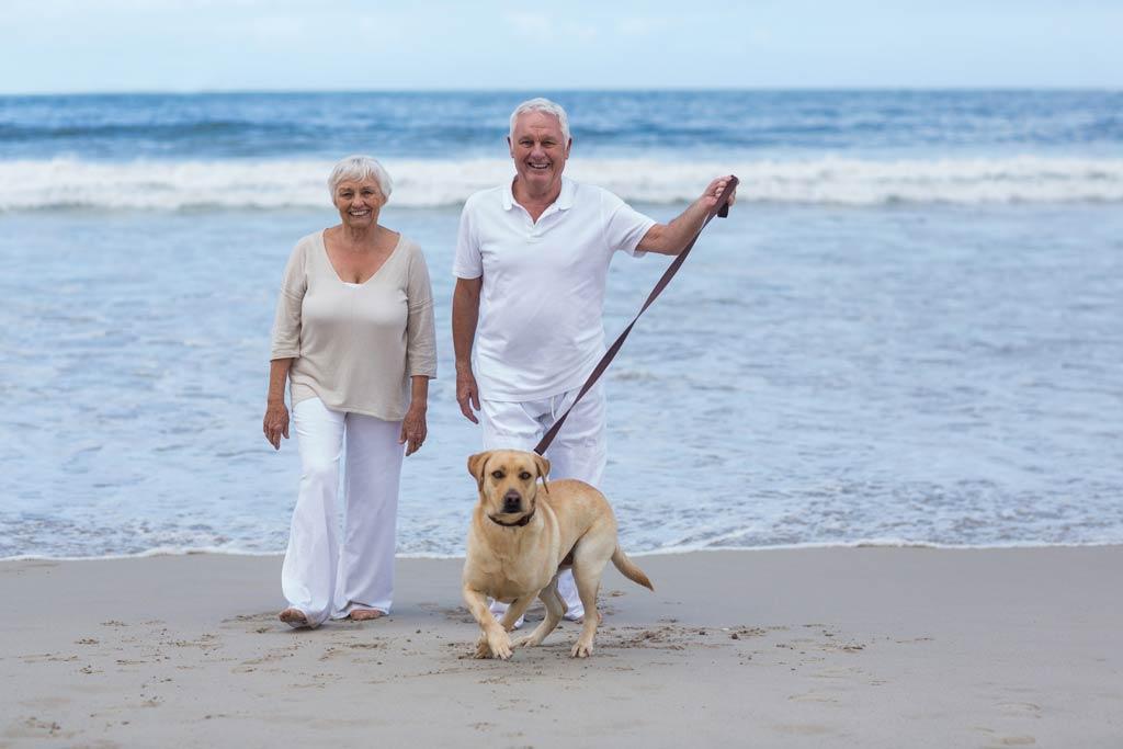 pies dla starszej osoby spacer2