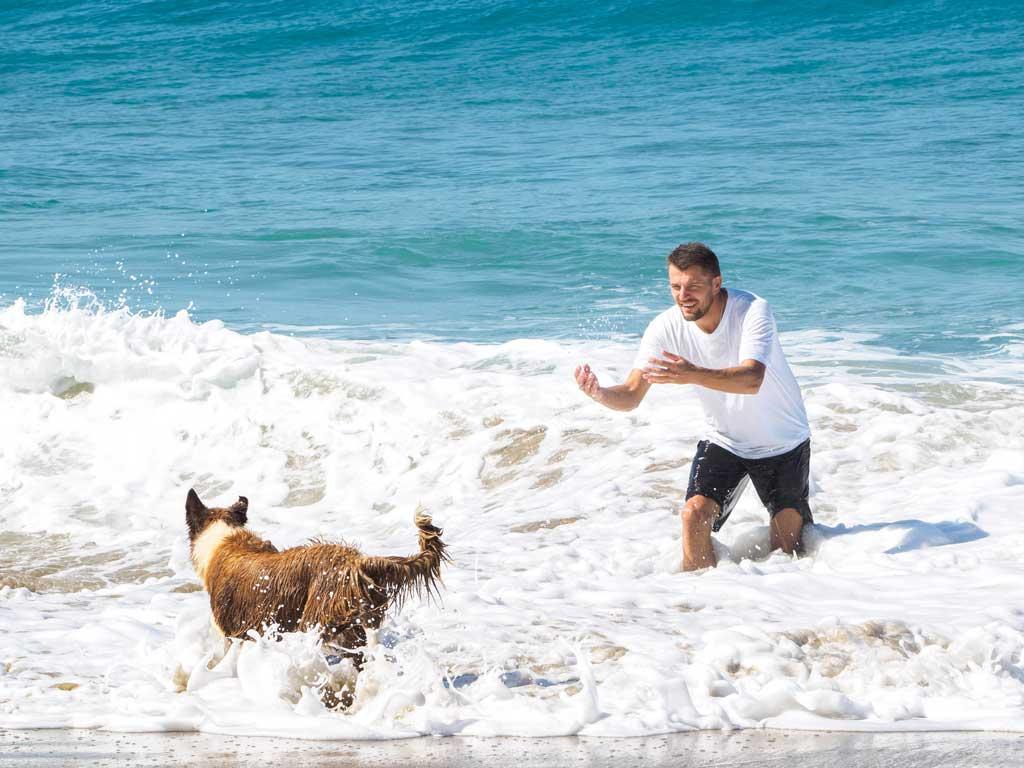 zabawy z psem w wodzie zacheta