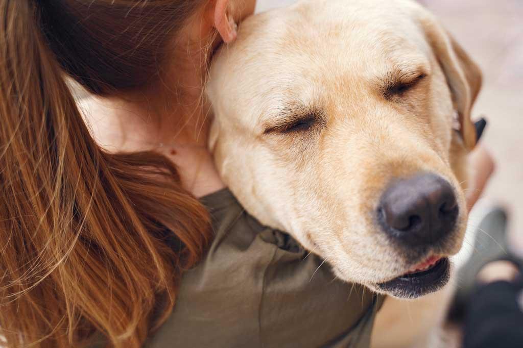 Jak pomóc psu w Sylwestra -okaż psu dużo czułości
