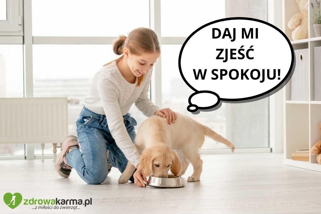 pies jest wybredny, a może łatwo się stresuje?