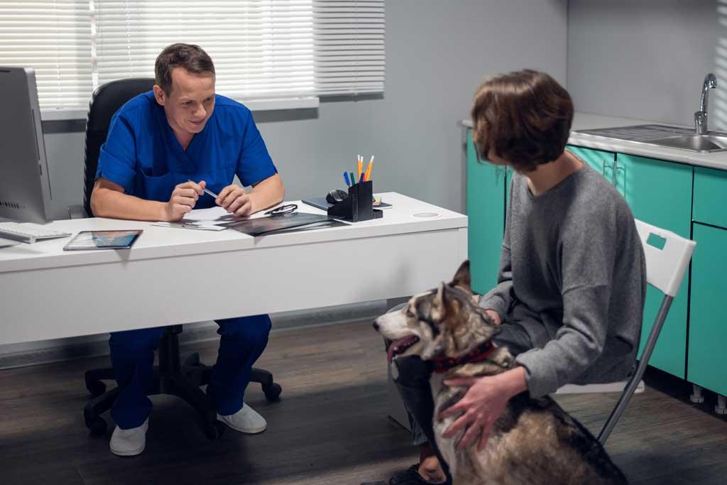 przewlekłe zaparcia u psa - nie lecz na własną rękę